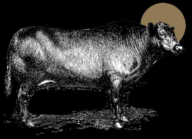 mucca-ham-holy-burger-2